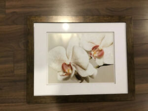 Picture Frames 2    14X18 with 10X13 Matte