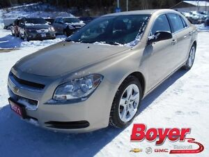 2011 Chevrolet Malibu LS Kawartha Lakes Peterborough Area image 1