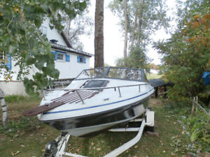Chaparral 19 pieds cuddy cabine Toit convertible Mercruiser 4Cyl