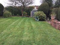 FORGET-ME-NOT Garden maintenance