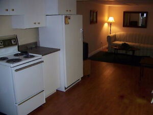 Furnished Downtown Ground Level Apartment - MAY 1