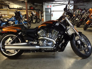 V-rod muscle 2014