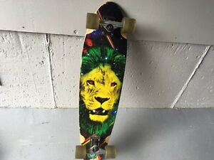 Long board - $100 or BO