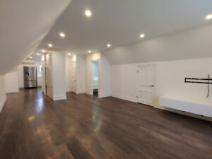 Newly Renovated Loft on Queen St. S.