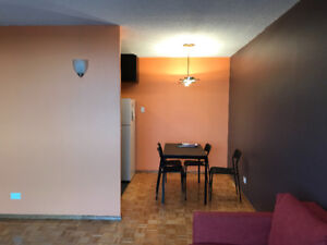 Downtown full furnished one bedroom condo for rent