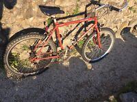 Claud butler kylami mountain bike