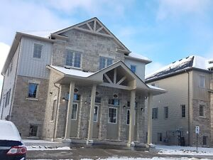 Brand new townhome in a great neighbourhood for rent