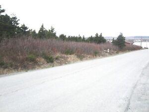 8 Dawes Road, Bay Roberts, NL - MLS# 1111982 St. John's Newfoundland image 4