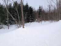 10 ACRE WOODED ESTATE RESIDENTIAL - OWEN SOUND