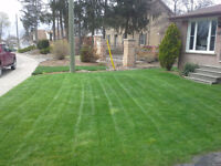 Lawn Mowing, Residential Lawn Care starting at $20/CUT