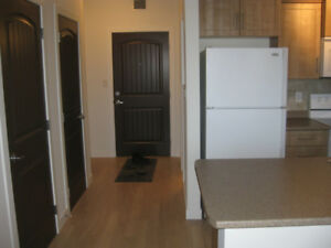 bachelor condo for rent