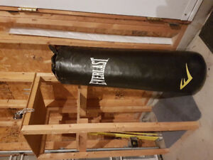 Everlast 70lb punching bag