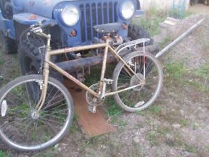 Supercycle Mountain Bike needs some TLC