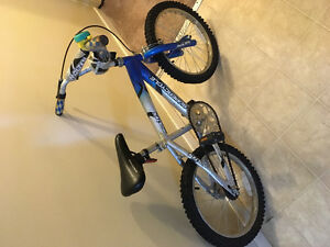 "16"" training wheels included"