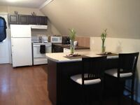 Recent Reno -Large Bachelor Apartment -Great Location -Sept 1st