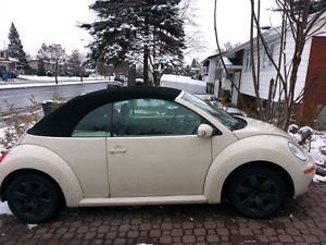 beetle decapotable