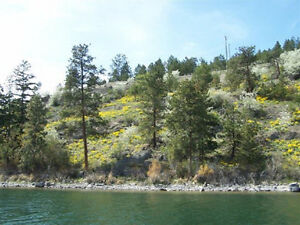 Lot 3 8700 Tronson Road, Vernon - Okanagan lakefront acreage