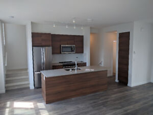 For Rent: 1200 sqft. townhouse in Surrey (2 Bed, 3 Bath, Deck)