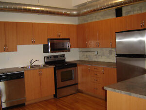 LIVE IN THE HEART OF DOWNTOWN, BEAUTIFUL APT FOR RENT JAN 2016 London Ontario image 4