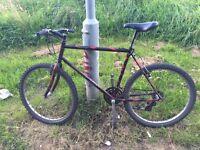 Diamond Back Sorrento Mountain/Hybrid Bike