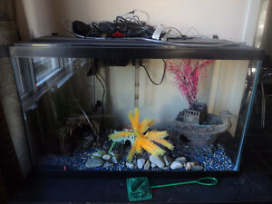 50 Gallon Fish tank and Accessories