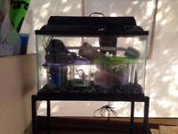 10 gallon aquarium plus stand