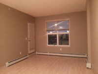 Rental including utilities; 2 bedrooms ;Clareview LRT Station