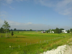 HOUSE FOR RENT, FARM LAND AND BARN PLUS SHOP