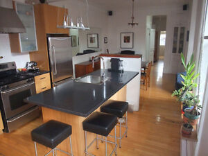 Furnished apartment in Mile End (Plateau Mont-Royal)