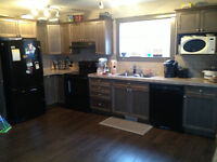 Lower Level Home FOR RENT AVAILABLE JUNE 15th OR SOONER