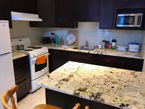 Beautiful Apartment for sub-lease (May1-Aug1) near UdeM/HEC