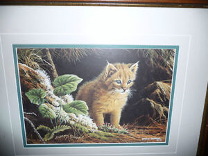 "Marc Barrie ""New World-Lynx Kitten"" Limited Edition, Signed and Stratford Kitchener Area image 10"
