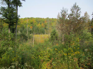 Recreational or Hunting Land