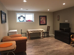 New Basement Suite All Utilites Includ for Rent (Two Bedrooms)