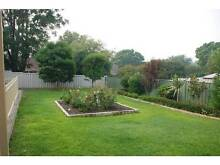 Tradies delight - 3x1 with huge shed in St James St James Victoria Park Area Preview