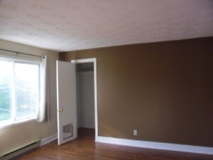 3 Bedroom Apartment Available January 1 or February 1, 2018