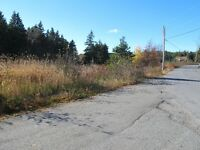 For sale 1.84 acres of land in lovely in Chapels Cove, NL