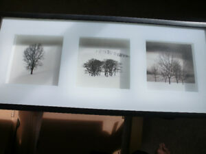 """TREES"" Shadow Box Picture Asking $15.00"