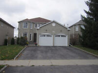 Beautiful 2-bdrm walk-out apartment in Newmarket for rent