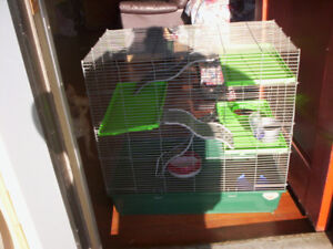 lage small pet cage with many ass.