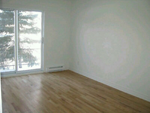 4 1\2 A Louer. For Rent Montreal