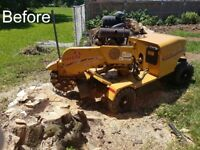 TREE PRUNING, STUMP REMOVAL, LANDSCAPING