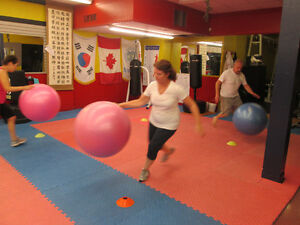 Fitness Classes on Ottawa street Windsor Region Ontario image 7