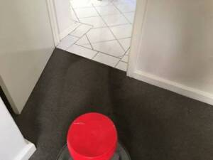 carpet & Tile steam cleaning,Vacate cleaning
