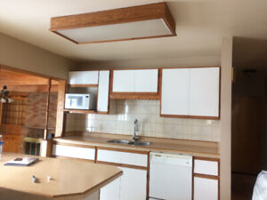 Kitchen Cabinets, Countertops, Sink and Faucet