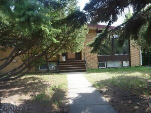 1 BEDROOM IN APT AND 1 BEDROOM IN HOUSE-BASEMENT SUITES SW HILL