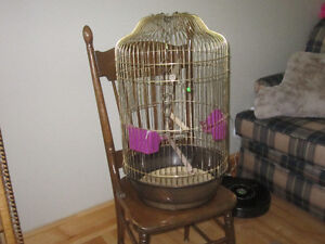 BIRD CAGE GOLD COLOR