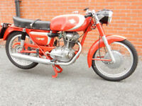 DUCATI 200 GT 1965 204cc - Stunning Example of this Italian Classic
