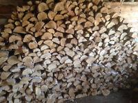 Birch Firewood Half Cord Delivered 250$ Edm & Area