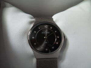 "Ladies ""Skagen"" Timepiece."